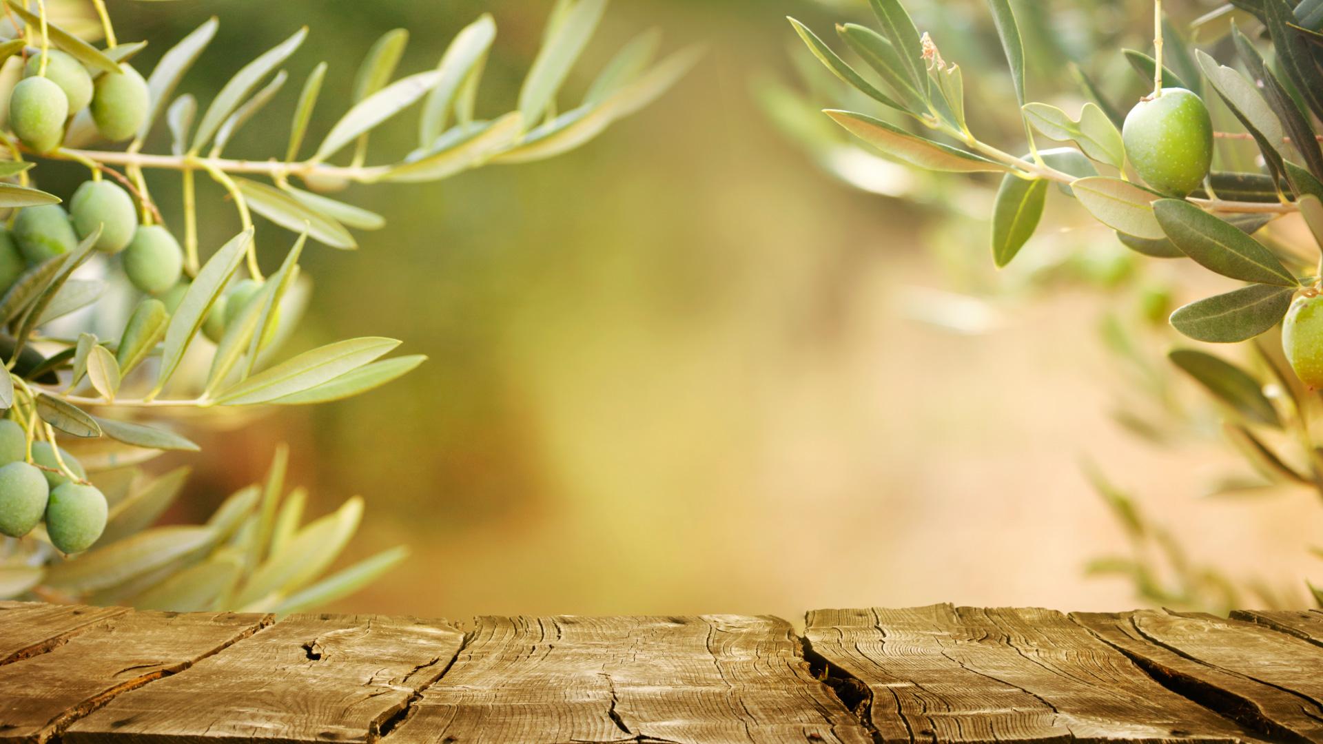 Oliiviöljy Sisiliasta
